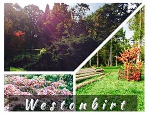 Westonbirt, The National Arboretum